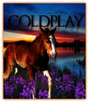 Coldplay by starredandsniped