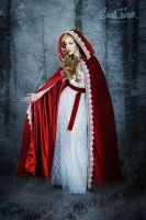little red riding hood no.1 by snottling1