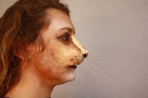 Lion Makeup Profile Shot by crummywater