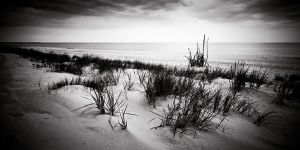 Down on Dunes by drkshp