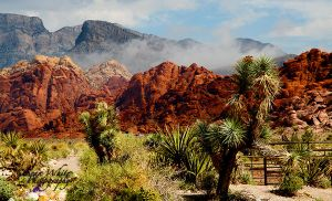 Red Rock Desert by 1shotaway