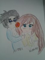 Hetalia: Hungary X Austria by cottoncloudyfilly