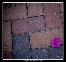 Lonely by TRE2Photo-n-Design
