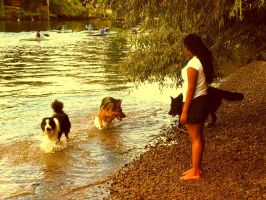 Summer river and dogs by Photoburner