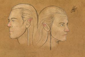 Haldir and Celeborn by Moumou38