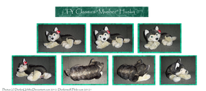 .: Ty: Musher Husky plush :. by Dunkin-Prime