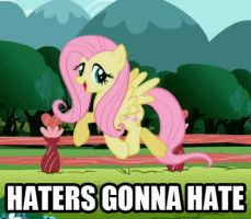 Haters gonna hate 5 by Mezkalito4p