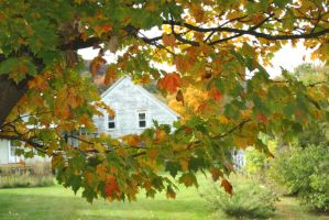 Colorfully Framed Cottage by BeautifulDragon322