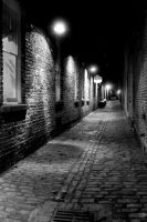 Alley by CatskillCat