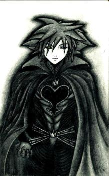 King of the Heartless by wicam007