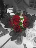 Roses (Edited Version 6) by sinisterinsomniac
