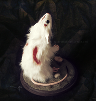 : rat brush god : by BastardPrince