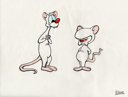 Pinky and the Brain by BellyButtonBrandon