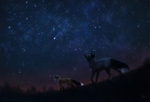 Have you ever seen the starry sky by Lhuin