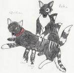OCs : Quilinn and Arko, parents of Orca and Wasgo by Zeldienne