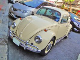 Just an Old Beetle by zynos958