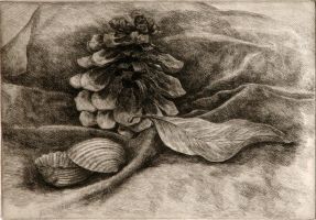 still life etching by ling0424