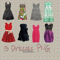 13 Dresses PNG by camiluchiiz