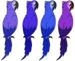 Cheap Blue Macaw Adopt [1/4 OPEN] by RandomeAdoptabels