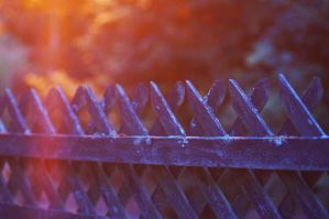 fence by 97lessi