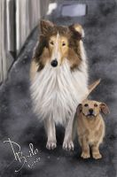 Lassie and a little friend by SatyHarvenheit