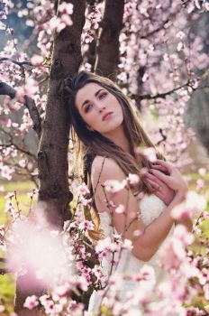 Cherry Blossom by JaquillynModel