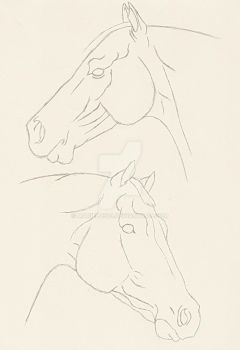 Two horse heads by Mariel0503