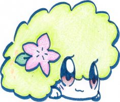 Shaymin (Land Forme) by MienfooIsEpic