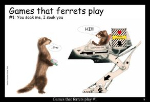 Games that ferrets play 1 by Foxia