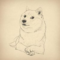 April Fools' Special: how to draw doge! by LadyAway