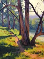 Coxs River sheoaks by artsaus