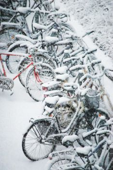 Bikes In Snow by Allisas