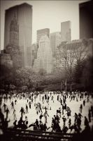 NYC - Central Park by achfoo