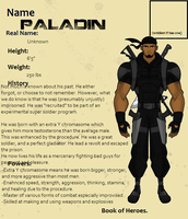 Book of Heroes-PALADIN by SplendorEnt