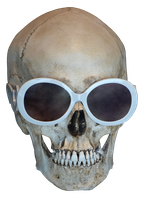 Human Skull Shades Frontal Png by jojo22