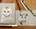 328- Barn and Eagle Owls by Lucky978