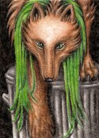 ACEO Lupuna - Down the dustbin by ElorenLeianor