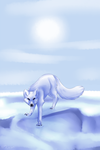 Arctic fox by Misspic