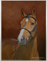 Warmblood - Pastel by BLACKNIGHTINGALE81