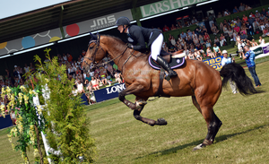 Show Jumping 27 by JullelinPhotography