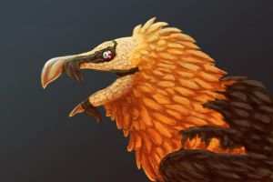 Bearded Vulture by Xailai