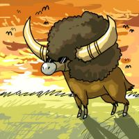 buffalo by heatrailshade