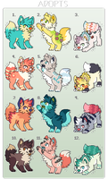 Adopt Batch 1 - OPEN (price reduced) by Quiet-Colors