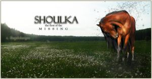 The M I S S I N G... Shoulka by illegal-designs