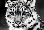 Snow leopard Painting by Starry-eyed-animals