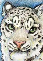 ACEO: Crayon Snow Leopard by cloudstar-wolf