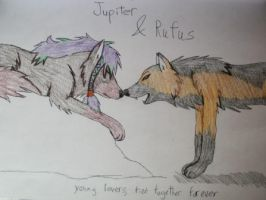 Jupiter and Rufus by shiro-chan63