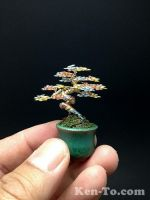 Mini 3-color wire bonsai tree sculpture by Ken To by KenToArt