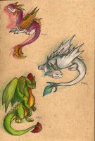 Colorful Trio by SwampDragon914