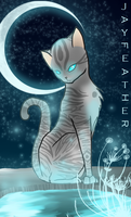 Jayfeather Character Card sort of thing. by Shatterwing123